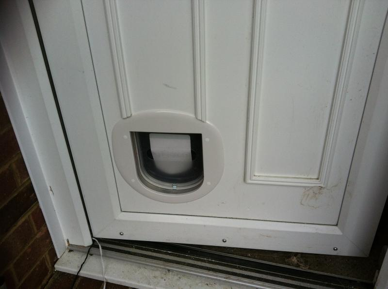 Cat flap fitted into panel door